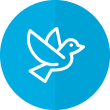 Icon for the Peace &amp Conflict hub