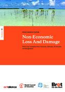 Non-Economic Loss And Damage